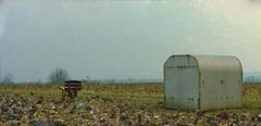 Fields near Cople, Bedfordshire